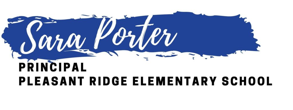 Sara Porter